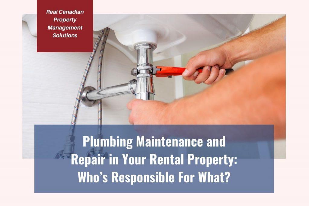 plumbing-maintenance
